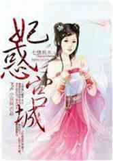 妃惑宫城小说