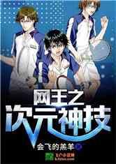 《网王之次元神技》小说封面