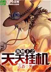 海贼王之天天挂机小说封面
