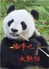 搞事吧!大熊猫