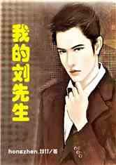 我的刘先生