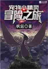 宠物小精灵:冒险之旅