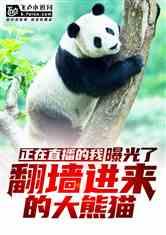 正在直播的我,曝光了翻墙进来的大熊猫