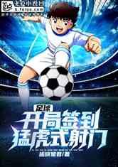 足球:开局签到猛虎式射门