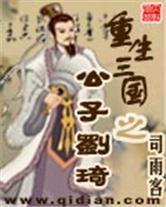 重生三国之公子刘琦