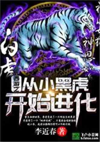 西游之从小黑虎开始进化