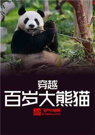 穿越百岁大熊猫