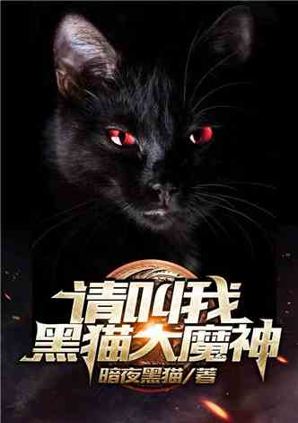 一切从黑猫开始进化