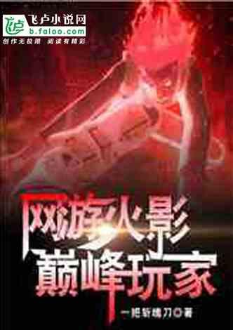 网游火影:巅峰玩家