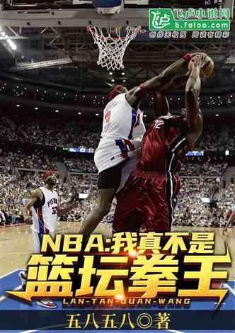 NBA:我真不是篮坛拳王