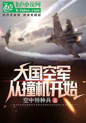 大国空军:从撞机开始