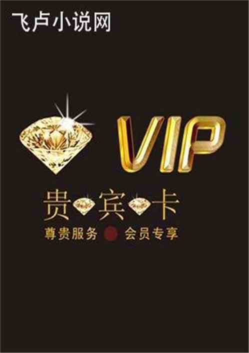 我是系统的VIP会员