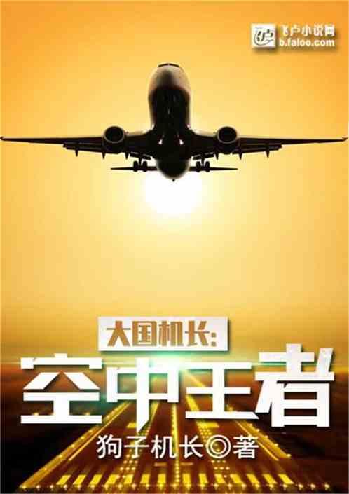 大国机长:空中王者