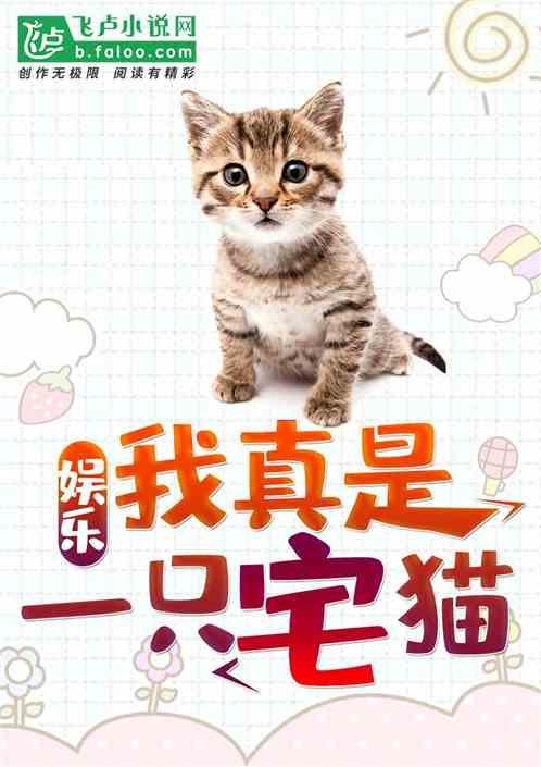 娱乐:我真是一只宅猫!